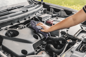Remove standing or loose dirt and grease before washing the motor