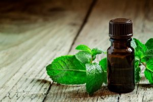 Preventing mice with peppermint essential oil